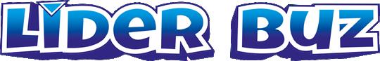 lider-buz-logo